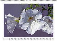 Eleganz in Weiss (Wandkalender 2019 DIN A2 quer) - Produktdetailbild 9