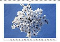 Eleganz in Weiss (Wandkalender 2019 DIN A3 quer) - Produktdetailbild 11