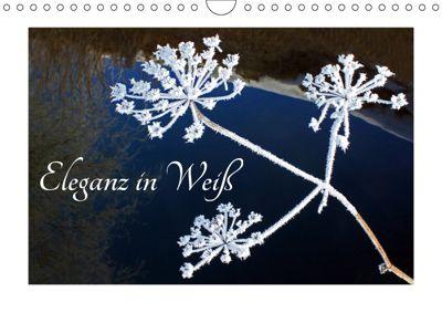 Eleganz in Weiß (Wandkalender 2019 DIN A4 quer), Christa Kramer