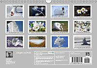 Eleganz in Weiß (Wandkalender 2019 DIN A4 quer) - Produktdetailbild 13