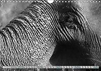 Elephants up close and personal (Wall Calendar 2019 DIN A4 Landscape) - Produktdetailbild 3