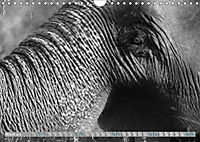Elephants up close and personal (Wall Calendar 2019 DIN A4 Landscape) - Produktdetailbild 3