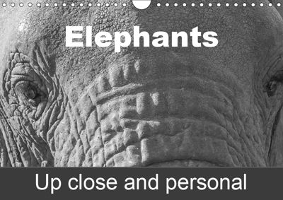 Elephants up close and personal (Wall Calendar 2019 DIN A4 Landscape), Antje Hopfmann