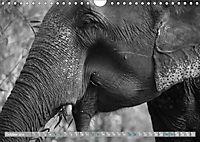 Elephants up close and personal (Wall Calendar 2019 DIN A4 Landscape) - Produktdetailbild 10