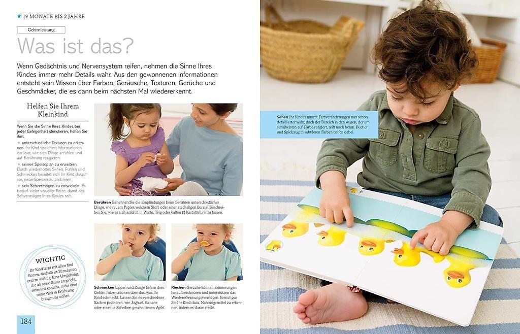 Buch Entwicklung Baby