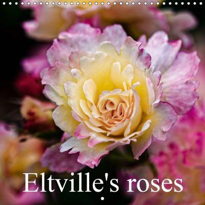 Eltville's roses (Wall Calendar 2019 300 × 300 mm Square), Dieter Meyer