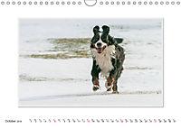 Emotional Moments: Bernese Mountain Dog. UK-Version (Wall Calendar 2019 DIN A4 Landscape) - Produktdetailbild 10