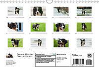 Emotional Moments: Bernese Mountain Dog. UK-Version (Wall Calendar 2019 DIN A4 Landscape) - Produktdetailbild 13