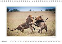 Emotional Moments: Big Cats of the World / UK-Version (Wall Calendar 2019 DIN A4 Landscape) - Produktdetailbild 3