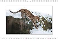 Emotional Moments: Big Cats of the World / UK-Version (Wall Calendar 2019 DIN A4 Landscape) - Produktdetailbild 2