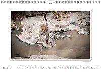 Emotional Moments: Big Cats of the World / UK-Version (Wall Calendar 2019 DIN A4 Landscape) - Produktdetailbild 5