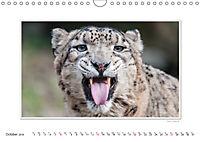 Emotional Moments: Big Cats of the World / UK-Version (Wall Calendar 2019 DIN A4 Landscape) - Produktdetailbild 10