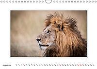 Emotional Moments: Big Cats of the World / UK-Version (Wall Calendar 2019 DIN A4 Landscape) - Produktdetailbild 8