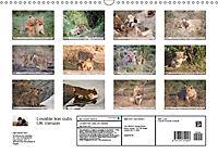 Emotional moments: Lovable lion cubs UK-Version (Wall Calendar 2019 DIN A3 Landscape) - Produktdetailbild 13