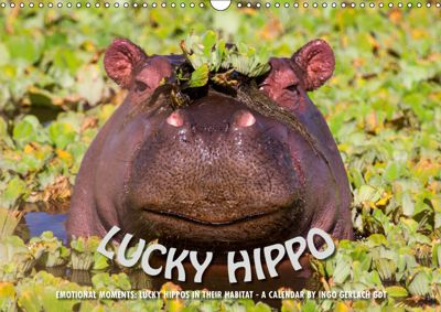 Emotional Moments: Lucky Hippo / UK-Version (Wall Calendar 2019 DIN A3 Landscape), Ingo Gerlach GDT