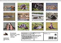 Emotional Moments: Lucky Hippo / UK-Version (Wall Calendar 2019 DIN A3 Landscape) - Produktdetailbild 13