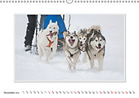 Emotional Moments: The Art of Huskys. UK-Version (Wall Calendar 2019 DIN A3 Landscape) - Produktdetailbild 12