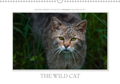 Emotional Moments: The Wildcat. UK-Version (Wall Calendar 2019 DIN A3 Landscape), Ingo Gerlach GDT