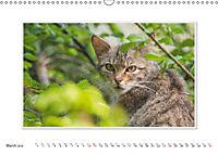 Emotional Moments: The Wildcat. UK-Version (Wall Calendar 2019 DIN A3 Landscape) - Produktdetailbild 3