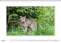 Emotional Moments: The Wildcat. UK-Version (Wall Calendar 2019 DIN A3 Landscape) - Produktdetailbild 5