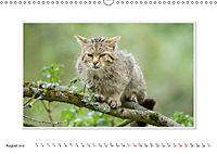Emotional Moments: The Wildcat. UK-Version (Wall Calendar 2019 DIN A3 Landscape) - Produktdetailbild 8