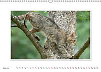 Emotional Moments: The Wildcat. UK-Version (Wall Calendar 2019 DIN A3 Landscape) - Produktdetailbild 7
