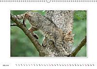 Emotional Moments: The Wildcat. UK-Version (Wall Calendar 2019 DIN A3 Landscape) - Produktdetailbild 7
