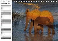 Emotionale Momente: African DreamsCH-Version (Tischkalender 2019 DIN A5 quer) - Produktdetailbild 11