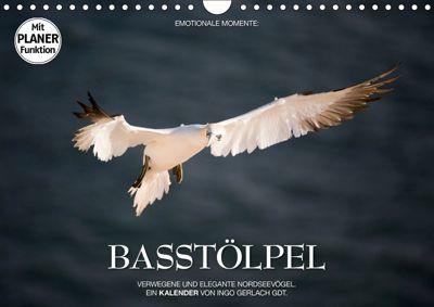 Emotionale Momente: Basstölpel (Wandkalender 2019 DIN A4 quer), Ingo Gerlach GDT