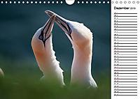 Emotionale Momente: Basstölpel (Wandkalender 2019 DIN A4 quer) - Produktdetailbild 12
