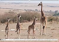 Emotionale Momente: Giraffen, die höchsten Tiere der Welt. (Wandkalender 2019 DIN A2 quer) - Produktdetailbild 3