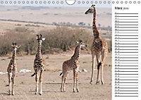 Emotionale Momente: Giraffen, die höchsten Tiere der Welt. (Wandkalender 2019 DIN A4 quer) - Produktdetailbild 3
