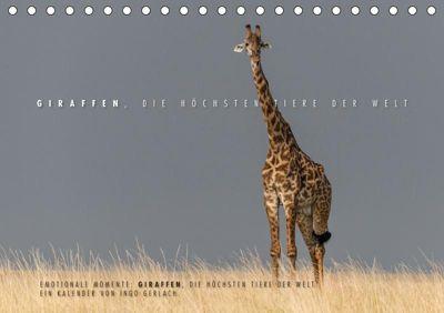 Emotionale Momente: Giraffen, die höchsten Tiere der Welt. (Tischkalender 2019 DIN A5 quer), Ingo Gerlach