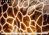 Emotionale Momente: Giraffen, die höchsten Tiere der Welt. (Tischkalender 2019 DIN A5 quer) - Produktdetailbild 7