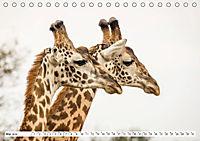 Emotionale Momente: Giraffen, die höchsten Tiere der Welt. (Tischkalender 2019 DIN A5 quer) - Produktdetailbild 5