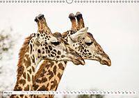Emotionale Momente: Giraffen, die höchsten Tiere der Welt. (Wandkalender 2019 DIN A3 quer) - Produktdetailbild 5