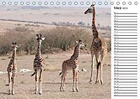 Emotionale Momente: Giraffen, die höchsten Tiere der Welt. (Tischkalender 2019 DIN A5 quer) - Produktdetailbild 3