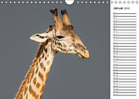 Emotionale Momente: Giraffen, die höchsten Tiere der Welt. (Wandkalender 2019 DIN A4 quer) - Produktdetailbild 1
