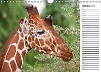 Emotionale Momente: Giraffen, die höchsten Tiere der Welt. (Wandkalender 2019 DIN A4 quer) - Produktdetailbild 10