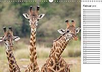 Emotionale Momente: Giraffen, die höchsten Tiere der Welt. (Wandkalender 2019 DIN A3 quer) - Produktdetailbild 2