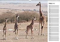 Emotionale Momente: Giraffen, die höchsten Tiere der Welt. (Wandkalender 2019 DIN A3 quer) - Produktdetailbild 3
