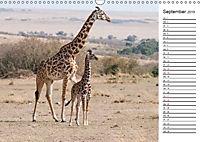 Emotionale Momente: Giraffen, die höchsten Tiere der Welt. (Wandkalender 2019 DIN A3 quer) - Produktdetailbild 9