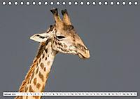 Emotionale Momente: Giraffen, die höchsten Tiere der Welt. (Tischkalender 2019 DIN A5 quer) - Produktdetailbild 1