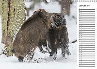 Emotionale Momente: Wild und Jagd. (Wandkalender 2019 DIN A3 quer) - Produktdetailbild 1