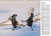 Emotionale Momente: Wild und Jagd. (Wandkalender 2019 DIN A3 quer) - Produktdetailbild 3