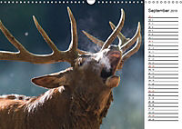 Emotionale Momente: Wild und Jagd. (Wandkalender 2019 DIN A3 quer) - Produktdetailbild 9