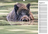 Emotionale Momente: Wild und Jagd. (Wandkalender 2019 DIN A3 quer) - Produktdetailbild 8