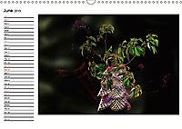 Enchanting Ikebana (Wall Calendar 2019 DIN A3 Landscape) - Produktdetailbild 6