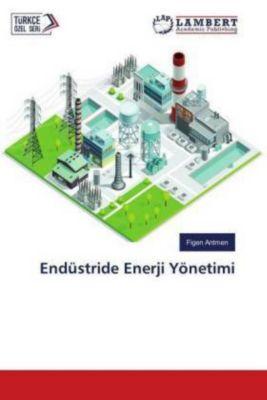 Endüstride Enerji Yönetimi, Figen Antmen