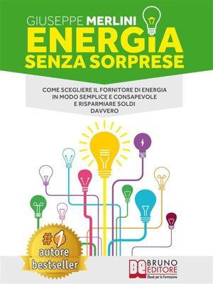 Energia Senza Sorprese, Giuseppe Merlini